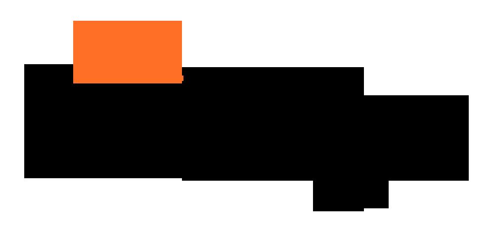 Logo comerç Sa Botiga