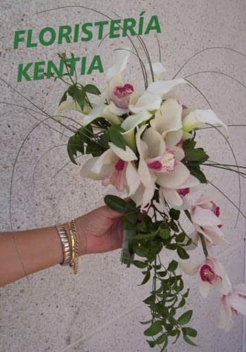 Logo comerç FLORISTERIA KENTIA