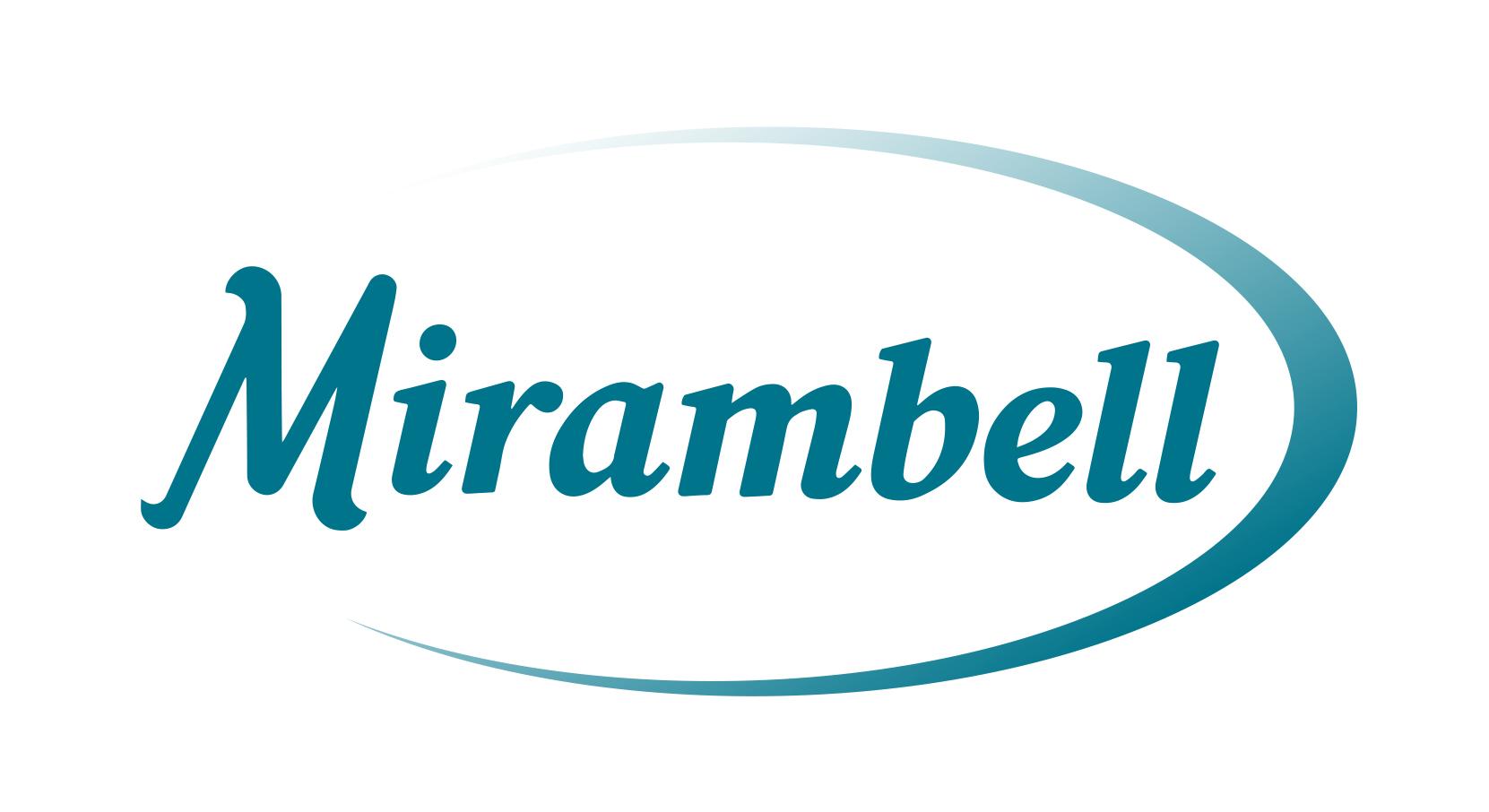 Logo comerç ELECTRONICA MIRAMBELL