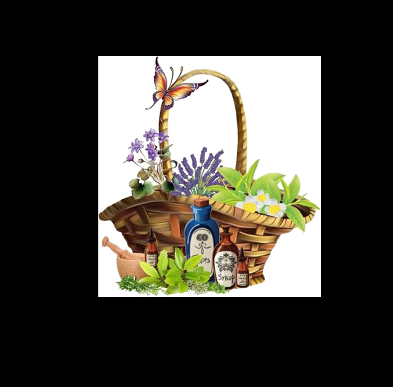 Logo comerç Herbes I Coses